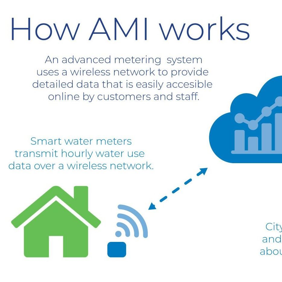 A graphic exampled of a wireless AMI network