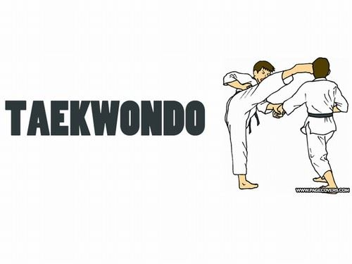 Taekwondo person kicking another person