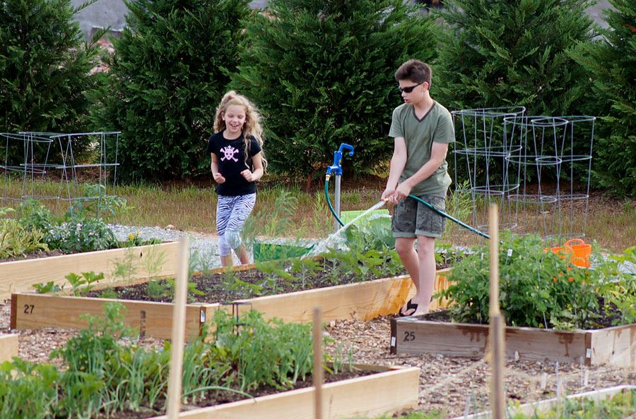 Children watering beds at the Community Gardens on College Avenue in Lenoir