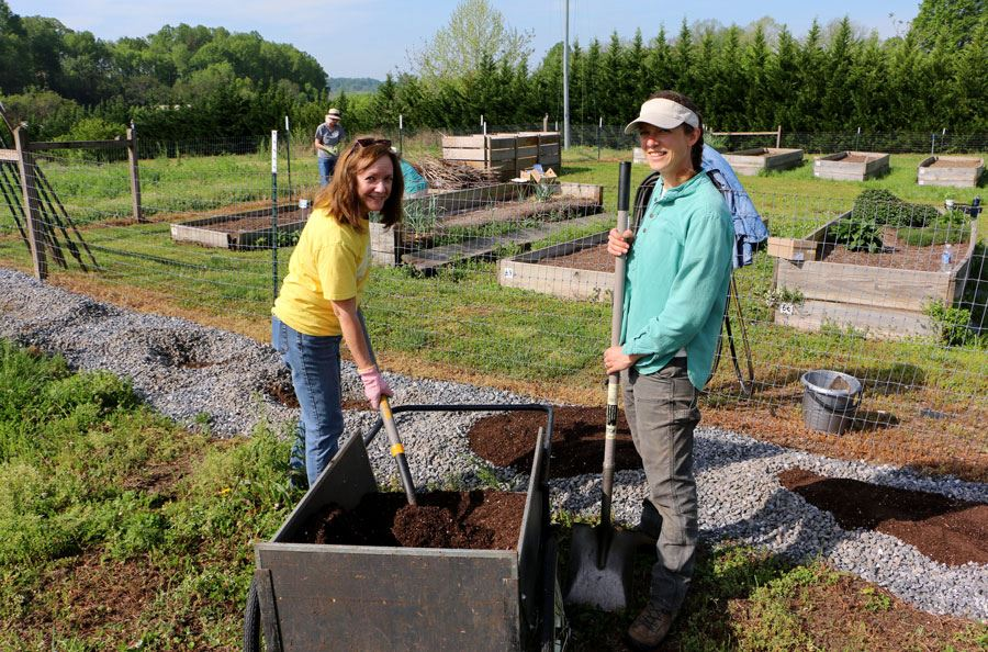 Eli Snyder and a volunteer shovel compost at the Community Gardens on College Avenue in Lenoir