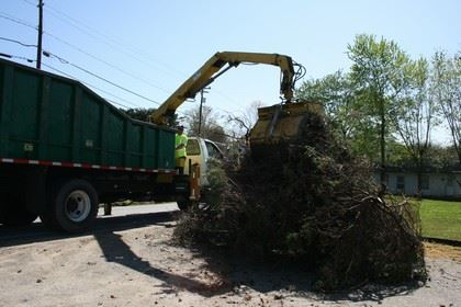 Large green truck picking up tree debris